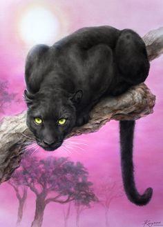 BLACK PANTHER BY KAYOMI HARAI