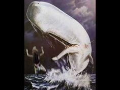 Dormi Moby Dick, spegni le ali e dormi sicura se vuoi  tanto i cavalieri del Santo Graal, non ti raggiungeranno mai.