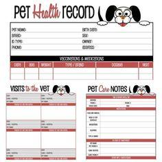 The Pet Set - Dog Care Organizer - Pet Care Organizer - EDITABLE - Organizing Printables