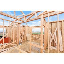 Framing, if you like what you see visit canyon-river.com or email canyonriverconstruction@gmail.com