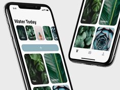 Image result for Potted app