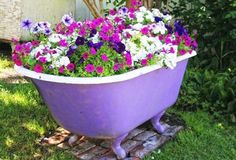 cheap yard decoratio #adidas #adidasmen #adidasfitness #adidasman #adidassportwear #adidasformen #adidasforman Clawfoot Bathtub, Petunias, Planter Pots, Organic Gardening, Bathroom, Plants, Beauty, Black Gold, Beleza