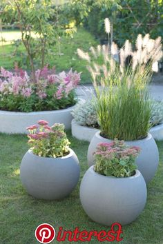 Garden trends 2019 - green plants with flowers in pastel tones and ornamental grasses . - gartengestaltung ideen - Garden trends 2019 – green plants with flowers in pastel tones and ornamental grasses … - Planters For Shade, Garden Planters, Indoor Garden, Diy Garden, Cosy Garden Ideas, Gravel Garden, Garden Types, Garden Projects, Pot Jardin