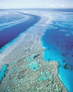 Gran Barrera de Coral, Australia (© Gtresonline)
