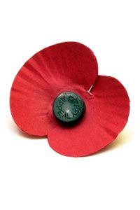 Remembrance Day: Great guide to using your place in the community to host a great event to raise money for the Royal British Legion who support our armed forces. Places In The Community, Poppy Images, Royal British Legion, Flanders Field, Daycare Crafts, Remembrance Day, How To Raise Money, Armed Forces, Fall Halloween