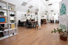 Soho Coxo, coworking office space in Sofia Bulgaria
