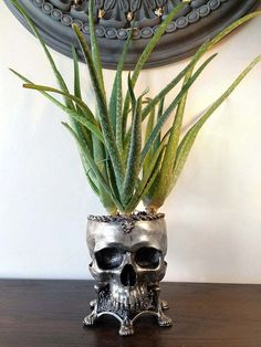 "Human Skull Planter - Pewter By: Dellamorte & Co. -Life sized sculpture of a hollow human skull set into an ornate base. -10"" tall and cast in resin, hand painted. A unique handmade gift for the dark soul in your life. Due to the handmade nature of these items, they are made to order"