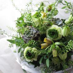 green arrangement. ranunculus,echeveria,fritillaria.