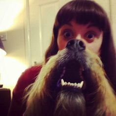 Forget Cat Beards.. Here are the Dog Beards :)