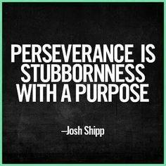 Perseverance, stubbornness