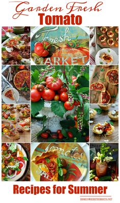 Garden Fresh Tomato Recipes for Summer! Visit to find recipes for Heirloom Tomato Pie, Hot Bacon Caprese Salad, BLT Bruschetta, Easy Muffin Pan Tomato Tarts, Cheese Straw Tomato Tartlets, Heirloom Tomato Tart with Bacon-Studded Crust, and a Farmers Market Bloody Mary!   homeiswheretheboatis.net