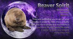 Power Animal, Spirit Guides, Teamwork, Spirit Animal, Family Life, Dreaming Of You, Animals, Animales, Animaux