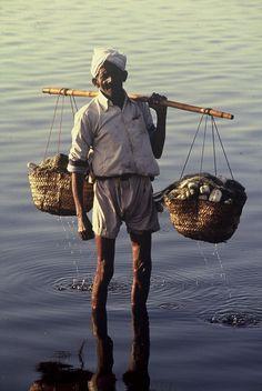 Local - Small - FisherMan - Pakistan
