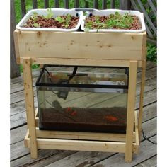 DIY Aquaponics Plans | Cheap Diy Aquaponics And Aquaponics Definition Wikipedia