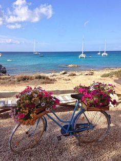 Formentera, Just a short way from Ibiza, invites you to a different world. Take a look at the beauty this boho island boasts and let it sweep you away. Bicycle Pictures, Bicycle Art, Vintage Stil, Flower Planters, Beautiful Beaches, Strand, Garden Art, Flower Power, Beautiful Flowers