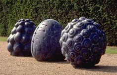 peter randall page fruiting bodies - Google Search