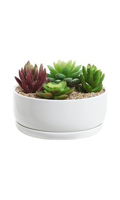 17.99$ - 6 inch Modern White Ceramic Round Designer Succulent Planter / Cactus Pot / Decorative Flower Holder Bowl from MyGift- Bring modern style to your displays of plants and decor with this beautifully-constructed planter pot. Made of ceramic- this planter features a modern design that includes a smooth- round shape and a gleaming white finish. The draining hole in the bottom helps keep plants properly drained- and the dish at the bottom (click on picture to read more...)