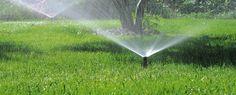 Системы дождевания — Автоматические газонные системы дождевания для полива от GARDENA