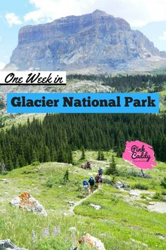 This is the only Glacier National Park itinerary you need! Perfect for hikers, non-hikers, couples, and families with kids! #montana #usa #travel #glaciernationalpark
