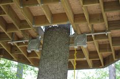 treehouse building tips - Google Search