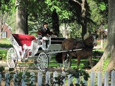 Reserve your horse and buggy tour of historic Madison today! North Georgia Tours | 706-340-4357 | http://www.northgeorgiatours.net/