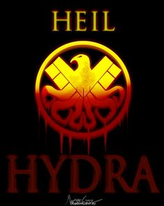 """sHEILd - Hydra """" two sides of the same that doesn't hold that much currency anymore"""""""