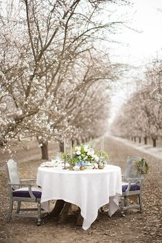 Intimate dinner table for two set in the almond orchard.  White, blue and greens in the floral arrangements, and antique brass containers, on vintage table linens. Vintage mixed China completes the romantic look. Almond Blossom Inspiration by Diana McGregor Photography. Floral and styling by Fleurie