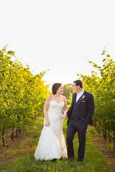 Montaluche Winery and Estates Bride and Groom Holding Hands Walking in Vinyard Summer Wedding Photo | www.hannahandrandall.com