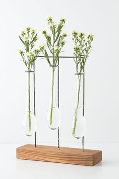 Horizontal Chemist Vase by Anthropologie