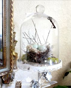 The Decorated House: ~  The Bell Jar - Cloche Party