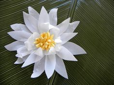Edible wafer paper flower and fondant water lily from #modern_luxe_events    http://www.etsy.com/listing/73716119/5-inch-sugar-water-lily-or-dahlia