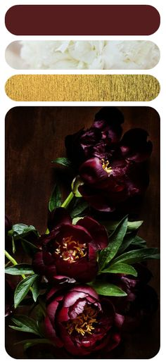 Red-violet, green and gold; another triadic color scheme that would look great in a room!