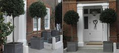 Plant containers, professional garden maintenance, topiary, wooden garden furniture.