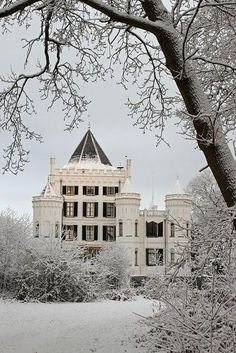victorian winter homes - Google Search Micoley's picks for #VictorianHomes www.Micoley.com