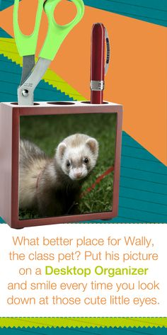 What better place for Wally,the class pet? Put his pictureon a Desktop Organizerand smile every time you look down at those cute little eyes.