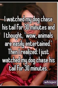 well this should be said for a cat to you just watch them chase a bird or just act stupid