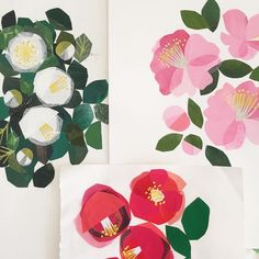 My trio of camellias there will be more I have no doubt. #illustration #spring #camellia #collage #dsfloral by clover_robin