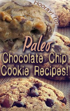 15 Best Paleo Chocolate Chip Cookies Recipes 1/2 cup coconut flour 3 eggs 2 tbs (heaping) pumpkin puree 1/2 tsp pumpkin spice (or cinnamon, nutmeg, cloves, ginger) 1/2 tsp cinnamon 1 tsp vanilla 1/2 tsp baking soda pinch of salt 2 tbs pumpkin seeds (optional) 1.5oz organic dark chocolate chips (75% or higher) 1-2 tbs sweetener (optional)