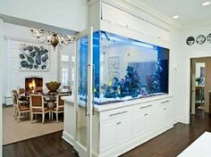 aquariums fish tanks interior design