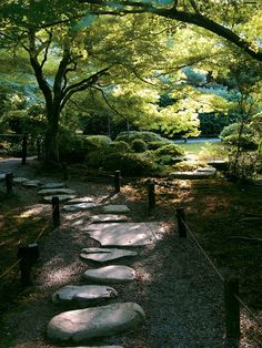 Dappled Light  Leaves and branches cast soft shadows and dappled sunlight on the grasses, topiary, and stone pathway of this Asian garden.