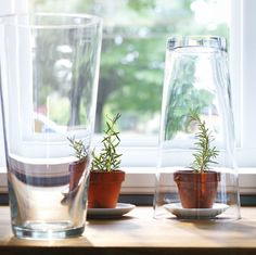 Turn BLADET vase over for an instant, individual plant sized greenhouse.