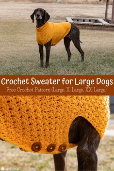Easy Crochet Dog Sweater for Large, X Large, and XX Large Dogs This easy crochet sweater for large dogs is stylish and warm! Learn how to crochet a dog sweater for big dogs using this free crochet pattern. Crochet Dog Sweater Free Pattern, Dog Pattern, Crochet Patterns, Pattern Ideas, Big Dogs, Large Dogs, Large Dog Sweaters, Big Sweater, Women's Sweaters