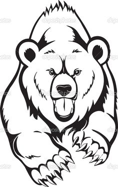 easy bear drawing grizzly drawings animals for attachment - bear face drawing Bear Face Drawing, Grizzly Bear Drawing, Teddy Bear Drawing, Grizzly Bear Tattoos, Art D'ours, Urso Bear, Bear Coloring Pages, Wood Burning Patterns, Stencil Art