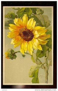 Acrylic Sunflower
