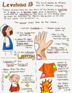 Doodle Through The Bible: Leviticus 13 Illustrated Faith Journal entry for Good Morning Girls (GMG) Bible Study