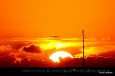 Paisagem Natural/Rumo ao sol..