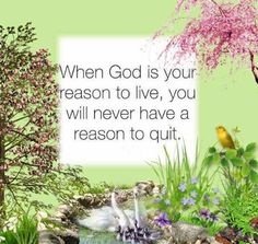 So True- SLReflections Photography When God is your reason to live, you will never have a reason to quit Love The Lord, God Is Good, Gods Love, Lord And Savior, God Jesus, Christian Life, Christian Quotes, Religion, Bible Verses Quotes