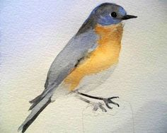 Watercolor Lesson - Learn How to Paint a Bluebird From a Photo•Art Instruction Blog