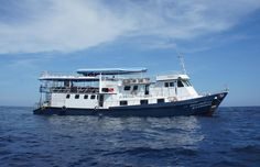 MV Andaman is a great Similan diving liveaboard boat which has single bunks, double cabins, and en suite double cabins, all with air conditioning and at very competitive prices. Professionally-run by an experienced European team, MV Andaman is first choice for many divers.