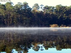 Lake Raven, Huntsville State Park. | 35 Gorgeous Photographs From Deep In The Heart Of Texas